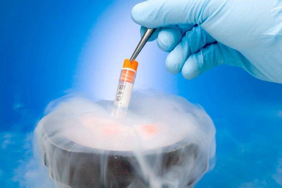 oborudovanie-dlya-zamorozki-spermi