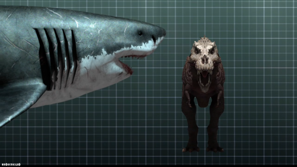 In fact, a T-rex would have been a quick snack for megalodon