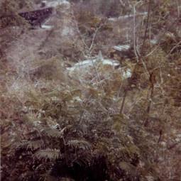 Старое фото НЛО из Гондураса