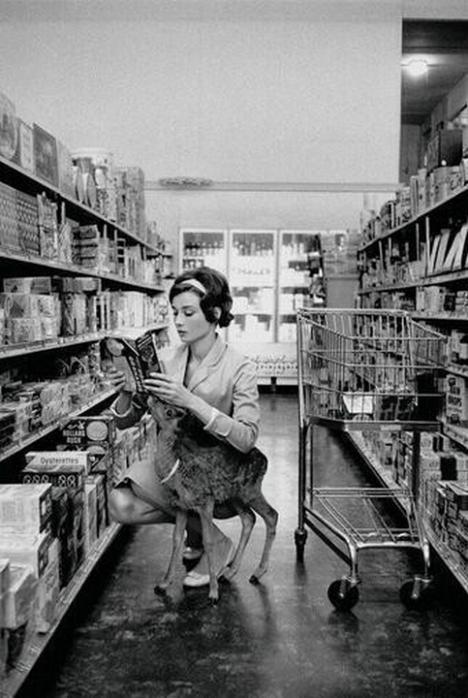 Одри Хепберн делает покупки со своим питомцем в Беверли-Хиллз, штат Калифорния -1958 год
