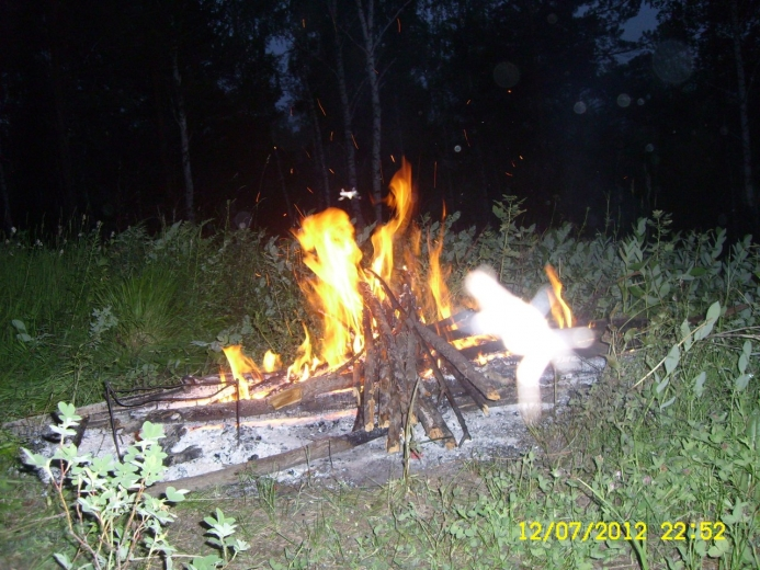 Саламандра (дух огня) ?