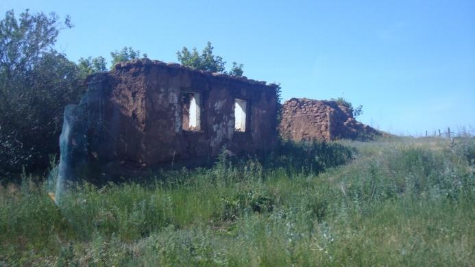 С. Дмитриевка Оренбургской области