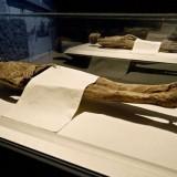 На переднем плане мумии баронессы Шенк фон Гайерн и барона фон Хольца, частично прикрытые по просьбе семьи