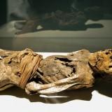 Мумия женщины 30-50 лет, страдавшая туберкулезом настолько сильно, что ей парализовало ноги