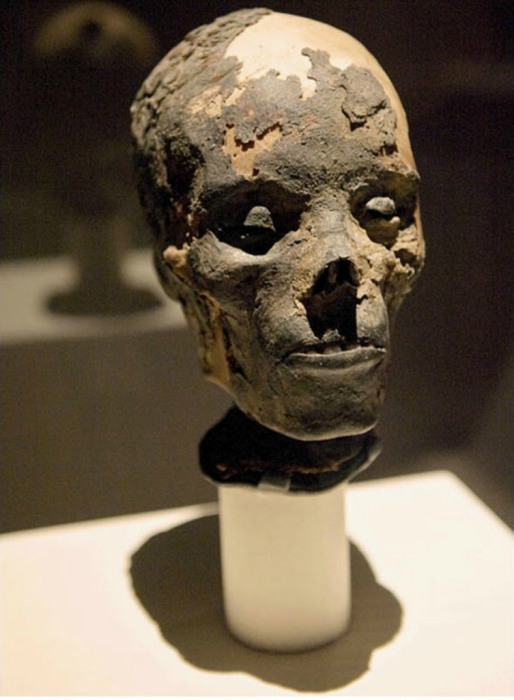 Голова египетской мумии взрослого человека