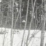 НЛО в Финляндии, 1979 год...
