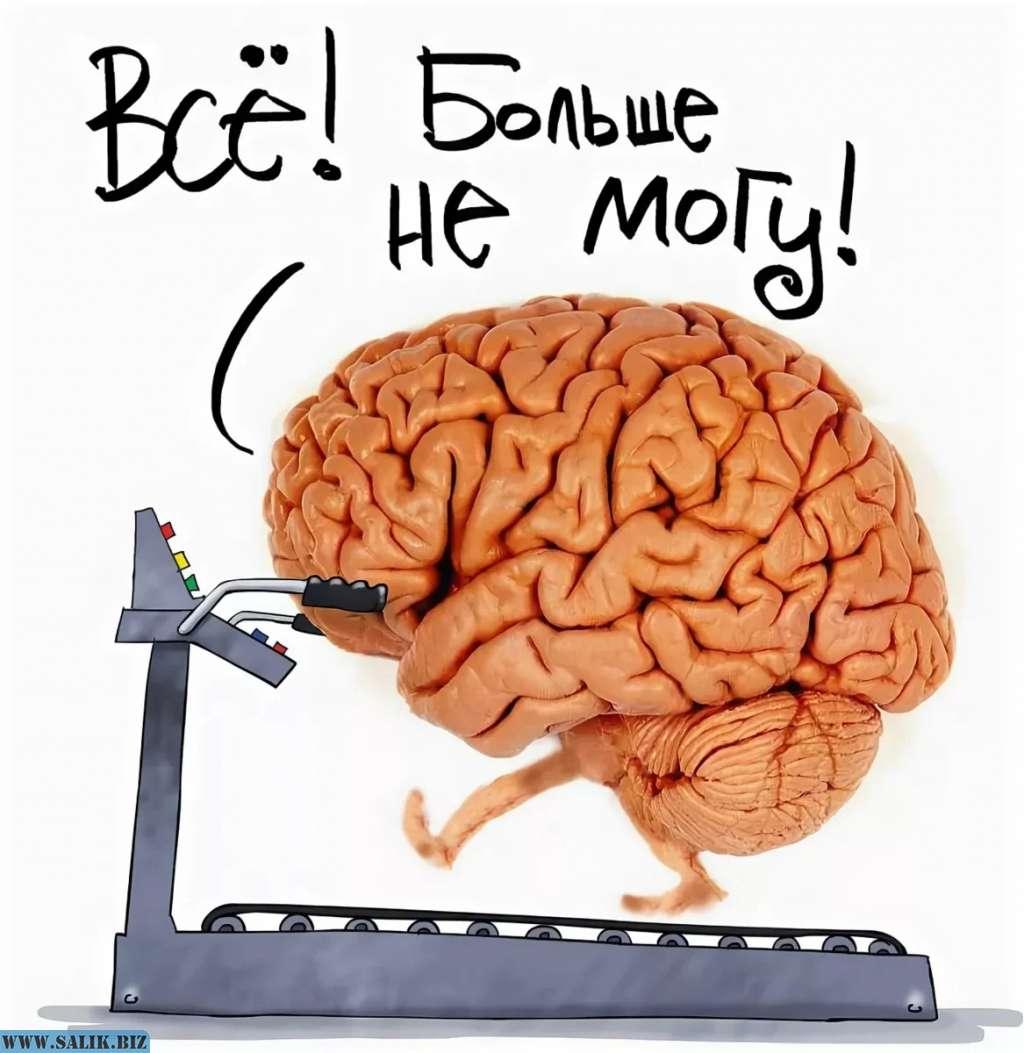 Смешные картинки с надписями про мозг