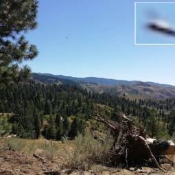 НЛО пролетел над просторами штата Айдахо