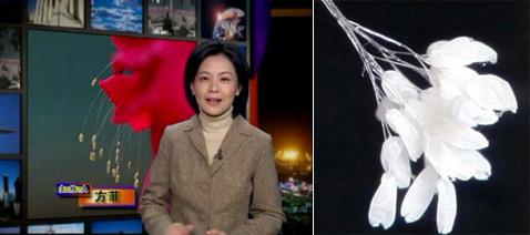 Картинки по запросу В октябре 2000 года монахи одного из буддистских храмов Сеула заметили странную вещь — на лбу позолоченной статуи божества выросли маленькие белые цветы, 21 штука