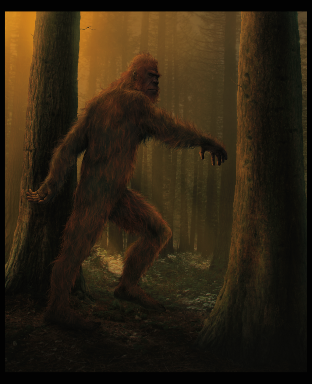 an analysis of the myth of big foot yeti and sasquatch After discussing the bigfoot phenomenon in asia (the yeti) and in north america ( sasquatch) he then subjects the evidence to a scathing scientific scrutiny as a primatologist dr napier brings an understanding of primate behavior and physiology that is the envy of many other authors.