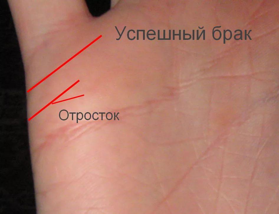 хиромантия с разъяснениями фото линия брака Москве: общая информация