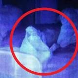 Фото младенца-призрака