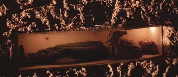 модели теплого как выжить если тебя похоронят заживо основные признаки термобелья