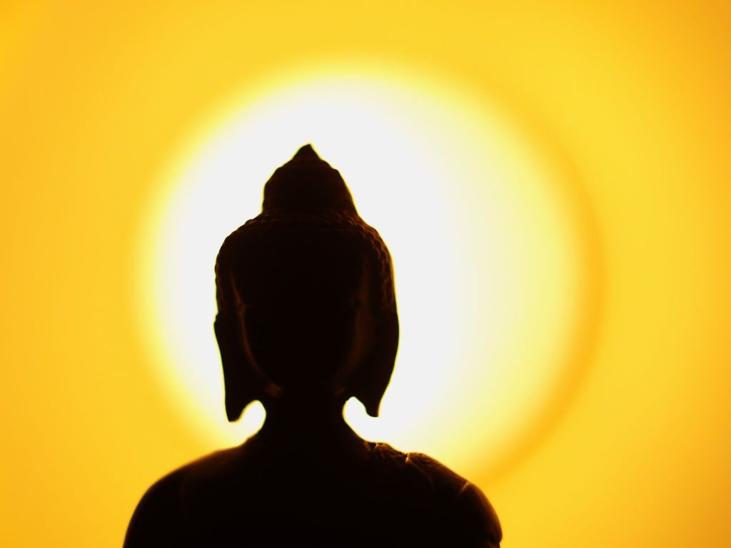 a comparison of absurdness and buddhism Bolojicom is a portal dealing with weekly opinions on current affairs, social ethos, parenting, poetry, and a study of the diversity of india the topics.