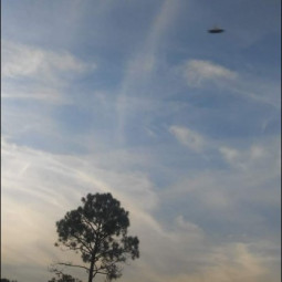 Фотография НЛО во Флориде