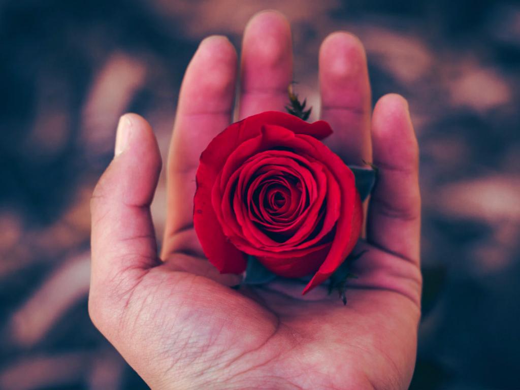Гадание на любовь, ее искренность и силу