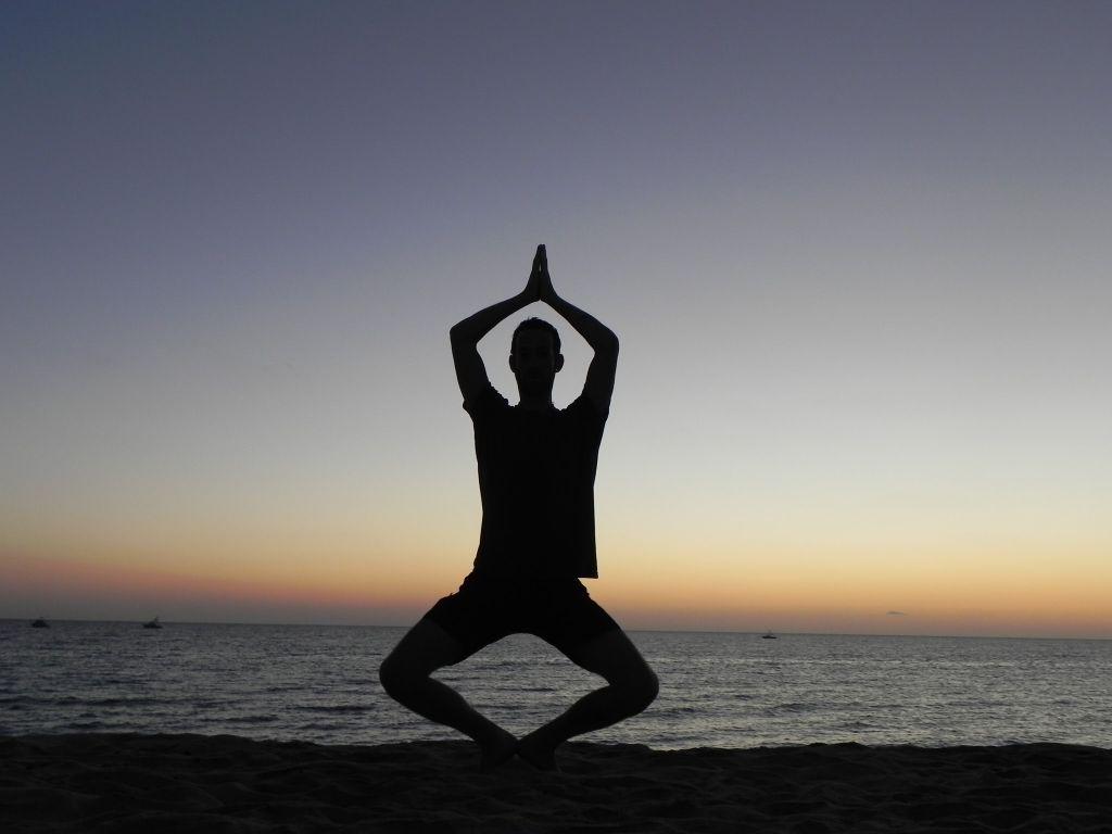 Тибетская йога сна и сновидений скачать pdf