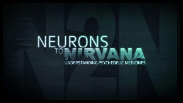 От нейронов к нирване. Медицинское применение психоделиков