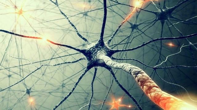 Тайны сознания. Бог в нейронах