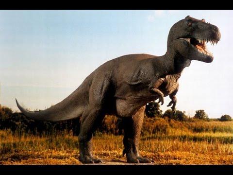 Всё о динозаврах. Доисторические убийцы. Затерянные миры