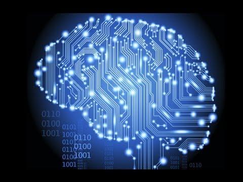 Тайны мозга. Информационная матрица и великие открытия