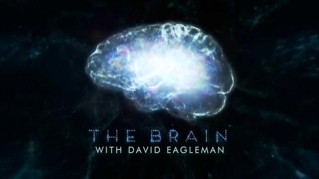 Мозг Человека. 2 серия