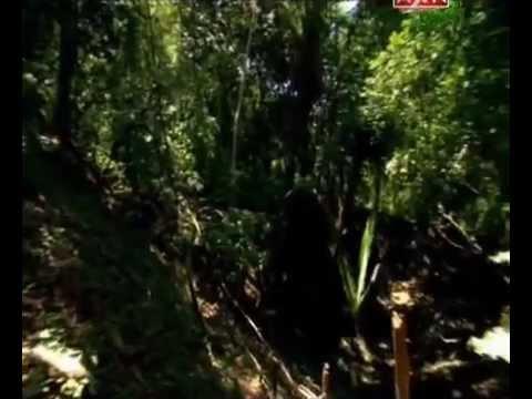 Подземное царство майя. Города подземелья