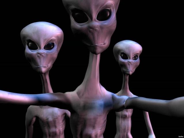 Загадки пришельцев. Лес Риндлшэм. Discovery Science
