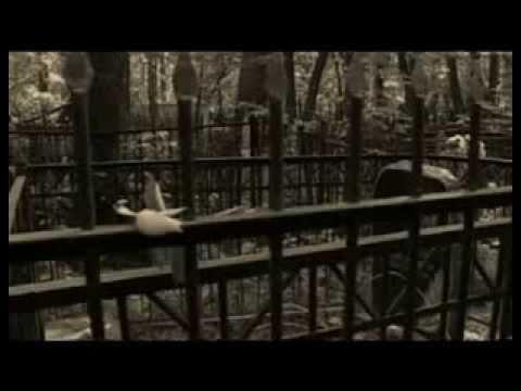 Теория смерти. Документальный фильм. Часть 1.