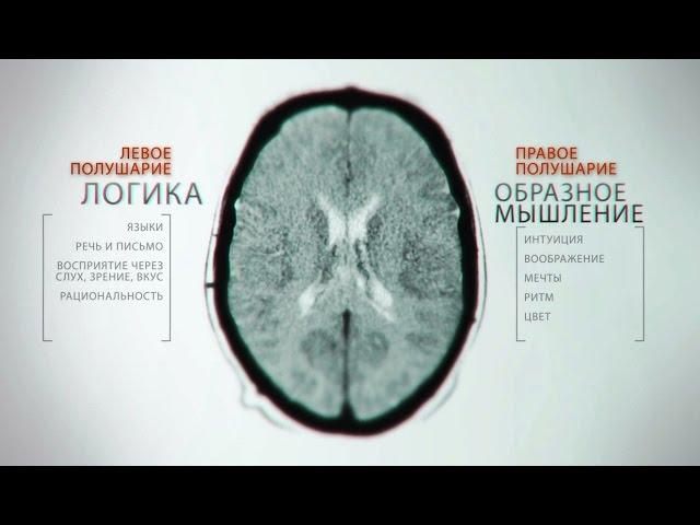 Тайны мозга. Фильм 4