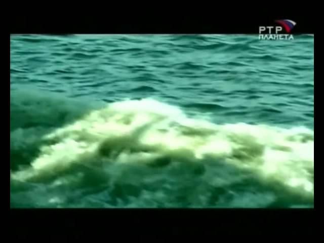 Призраки со дна океана НЛО под Водой.