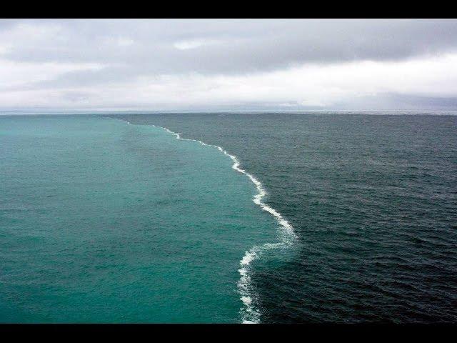 Океан бурлит, кто живёт на дне? Аденская аномалия