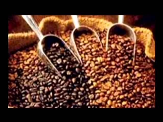 Как казак Европу кофе напоил - В поисках истины