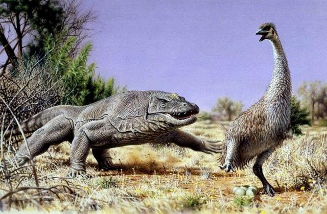 Легенды о драконах. Древние рептилии. Живая тема