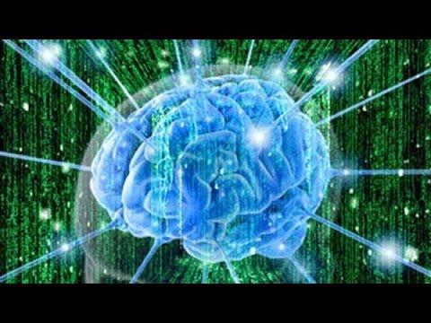 Секретные файлы. Тайны мозга