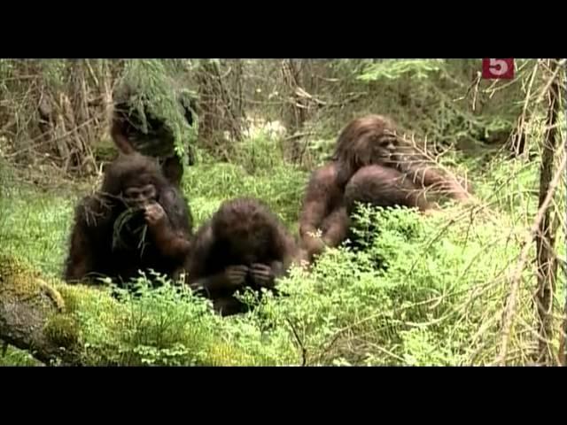 Неандертальцы. Конец эпохи