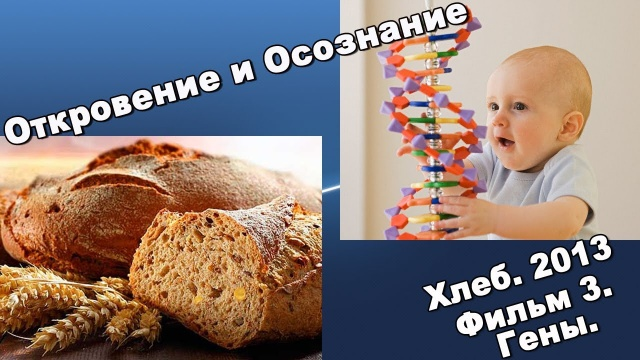 Хлеб. Фильм 4. Гены