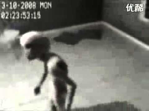 Инопланетянин на видео