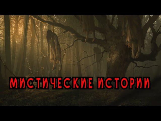 Мистические истории 4 серия (4 сезон)