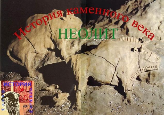История Каменного Века.Неолит