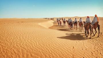 Пустыня Сахара. Смертельный марафон. Африка. Документальный фильм
