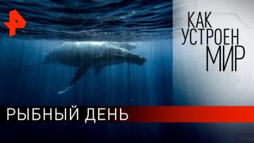 """Рыбный день. «Как устроен мир"""" с Тимофеем Баженовым (12.03.2020)"""