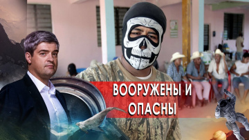 Вооружены и опасны. НИИ РЕН ТВ (18.01.2021)