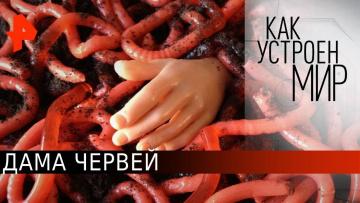 """Дама червей. «Как устроен мир"""" с Тимофеем Баженовым (22.06.2020)"""