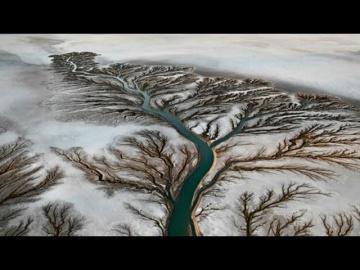 Реки корни
