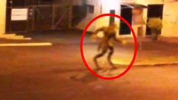 5 необъяснимых существа, снятых на камеру