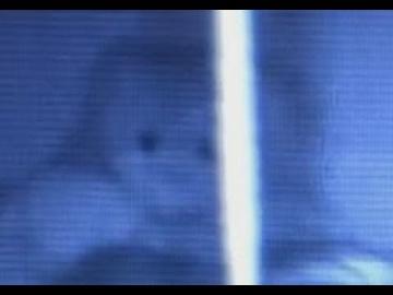 Привидение вселилось в плюшевого мишку