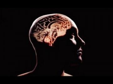 Мозг человека  - главная тайна нераскрытая учеными. Документальный фильм