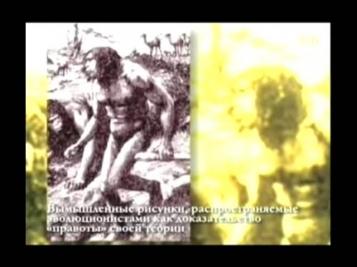 Идолы дарвинизма. Мифы, которые так долго внушали миру