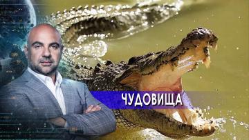 """Чудовища. """"Как устроен мир"""" с Тимофеем Баженовым (22.07.2021)"""